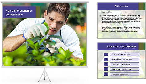0000081455 PowerPoint Template