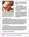 0000081460 Word Templates - Page 4