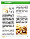 0000081463 Word Template - Page 3