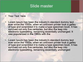 0000081468 PowerPoint Templates - Slide 2