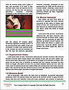 0000081468 Word Templates - Page 4