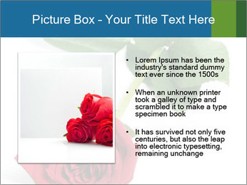 0000081470 PowerPoint Template - Slide 13