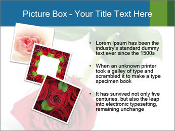 0000081470 PowerPoint Template - Slide 17