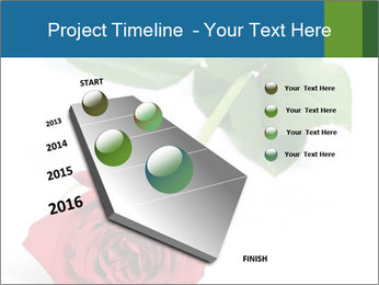 0000081470 PowerPoint Template - Slide 26