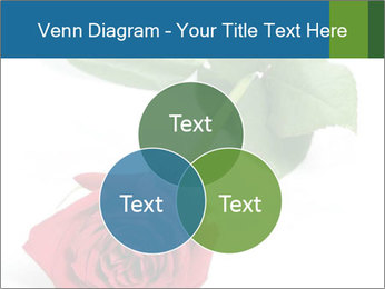 0000081470 PowerPoint Template - Slide 33