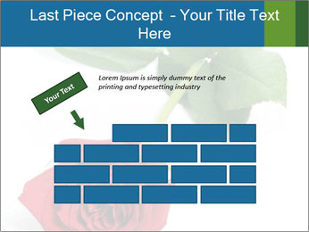 0000081470 PowerPoint Template - Slide 46