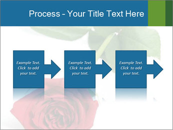 0000081470 PowerPoint Template - Slide 88