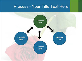 0000081470 PowerPoint Template - Slide 91