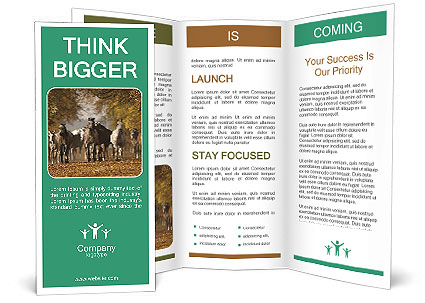 0000081472 Brochure Templates