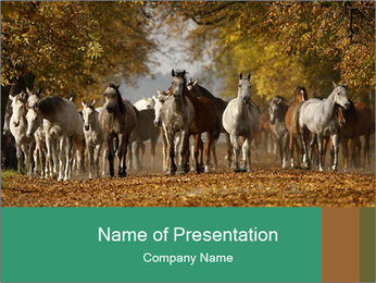 0000081472 PowerPoint Template - Slide 1