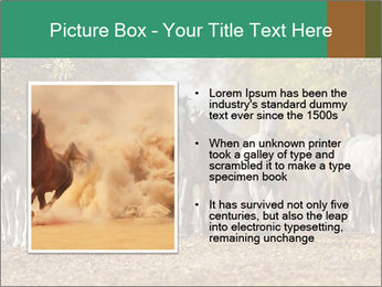 0000081472 PowerPoint Template - Slide 13