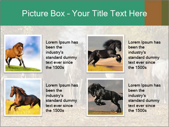 0000081472 PowerPoint Template - Slide 14