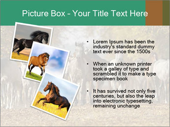 0000081472 PowerPoint Template - Slide 17
