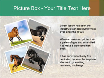 0000081472 PowerPoint Template - Slide 23