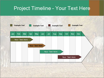 0000081472 PowerPoint Template - Slide 25