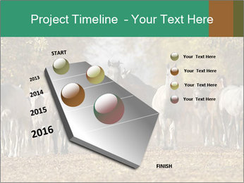 0000081472 PowerPoint Template - Slide 26