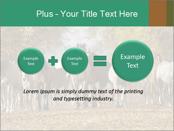 0000081472 PowerPoint Template - Slide 75