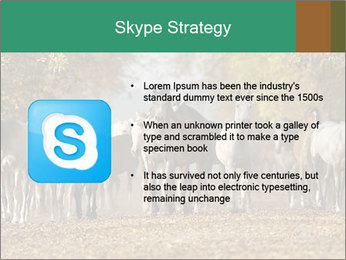 0000081472 PowerPoint Template - Slide 8
