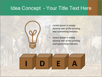 0000081472 PowerPoint Template - Slide 80