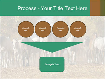 0000081472 PowerPoint Template - Slide 93