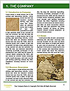 0000081473 Word Template - Page 3