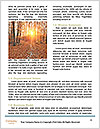 0000081477 Word Templates - Page 4