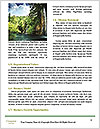 0000081478 Word Templates - Page 4