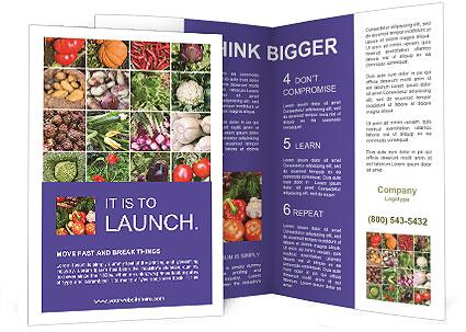 0000081479 Brochure Template