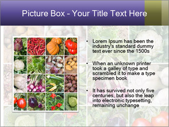 0000081479 PowerPoint Templates - Slide 13