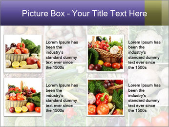 0000081479 PowerPoint Templates - Slide 14