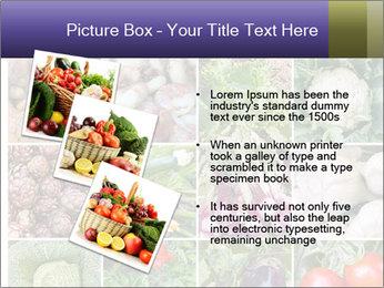 0000081479 PowerPoint Templates - Slide 17