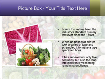 0000081479 PowerPoint Templates - Slide 20