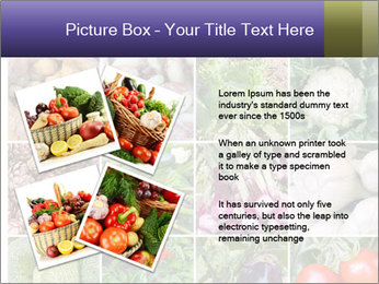 0000081479 PowerPoint Templates - Slide 23
