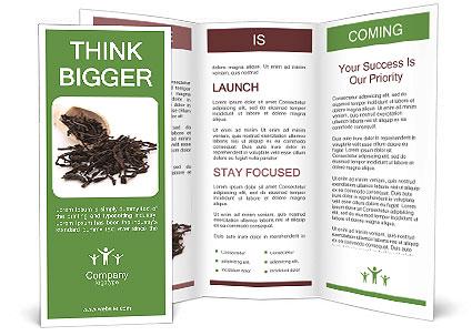 0000081480 Brochure Template