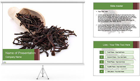 0000081480 PowerPoint Template