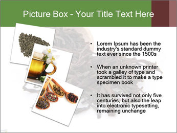 0000081480 PowerPoint Templates - Slide 17