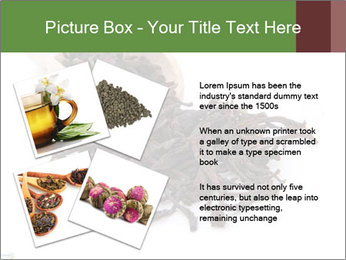0000081480 PowerPoint Templates - Slide 23