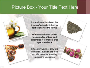 0000081480 PowerPoint Templates - Slide 24