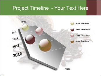 0000081480 PowerPoint Templates - Slide 26