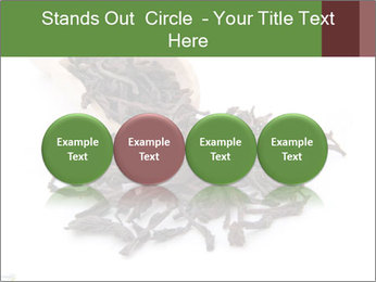 0000081480 PowerPoint Templates - Slide 76