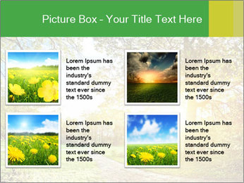 0000081489 PowerPoint Templates - Slide 14