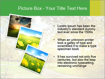 0000081489 PowerPoint Templates - Slide 17