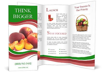 0000081490 Brochure Template