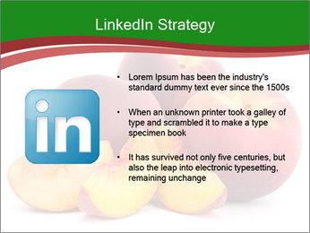 0000081490 PowerPoint Template - Slide 12