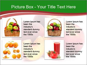 0000081490 PowerPoint Template - Slide 14