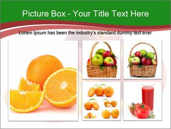 0000081490 PowerPoint Template - Slide 19