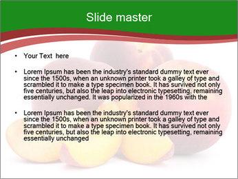 0000081490 PowerPoint Template - Slide 2