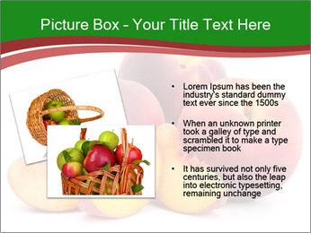 0000081490 PowerPoint Template - Slide 20