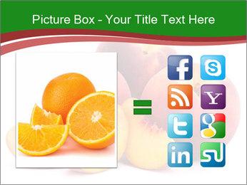 0000081490 PowerPoint Template - Slide 21