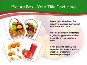 0000081490 PowerPoint Template - Slide 23